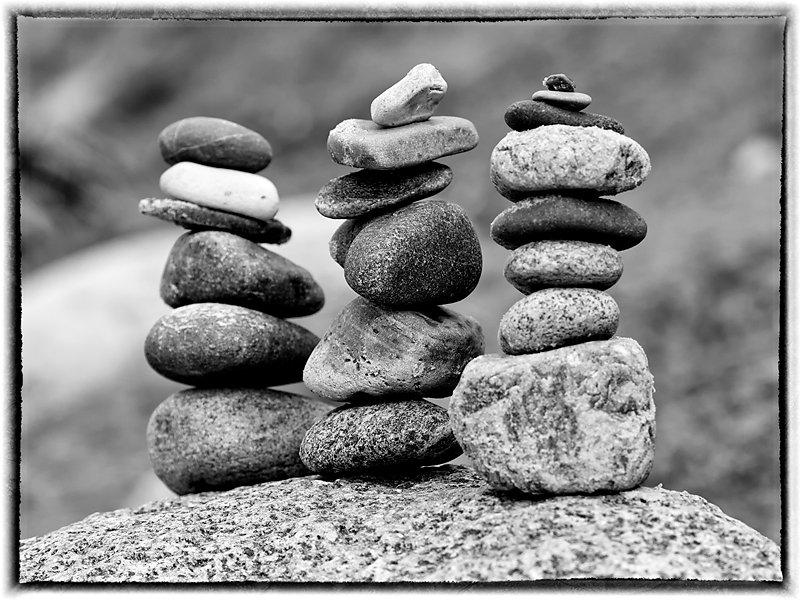 stein2.jpg